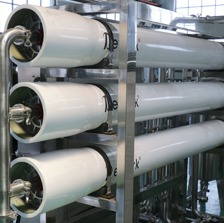 Distinctive Water Treatment System With Reverse Osmosis Technology