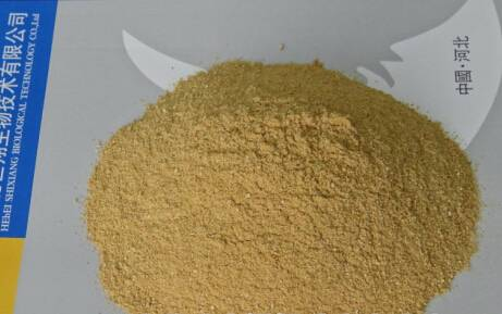 beer yeast for animal feed additive 45% protein