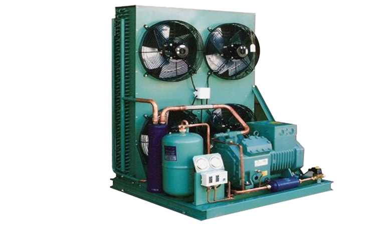 Two Stage Air Cooled Piston Condensing Unit