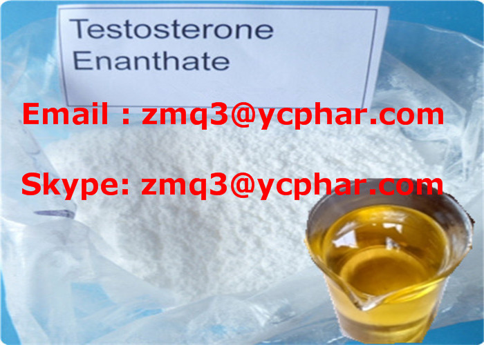 Testosterone Enanthate High Quality Raw Steroid Powders