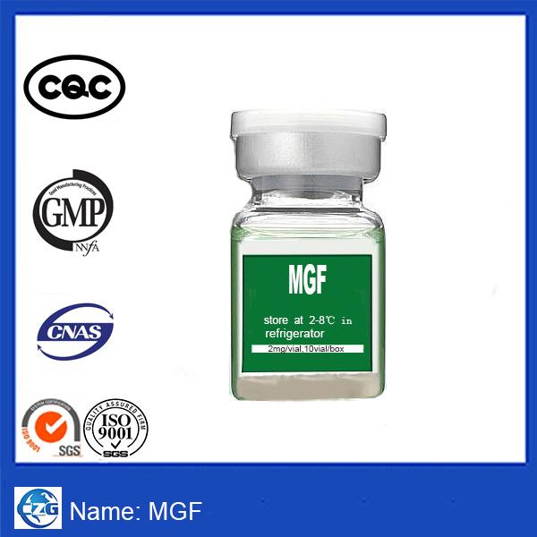 High Quality PEG MGF ; Insulin-like growth factor 1