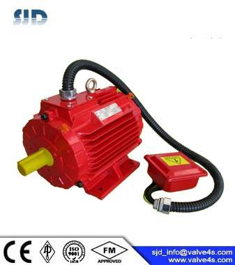 D1CS Flammable-proof 3-Phase Asynchronous Motor