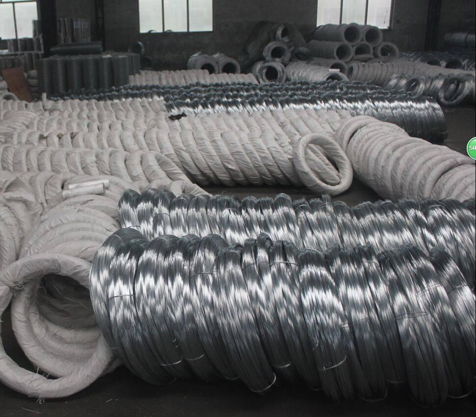 supply galvanized wire price & electro galvanized iron wire china supplier