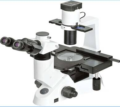 Inverted Biological Microscope JXL-1000T
