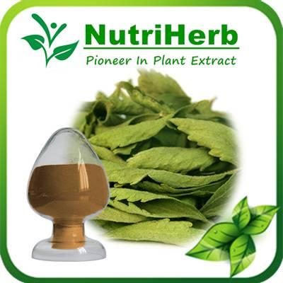 Natural Senna leaf Extract 8% Total Sennoside