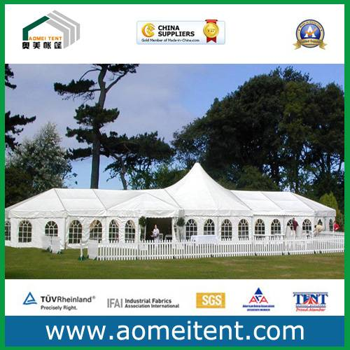 Big Exhibition Tent on Lawn (Aomei 20)