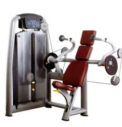 Commercial Gym Equipment Arm Extension SR-8809