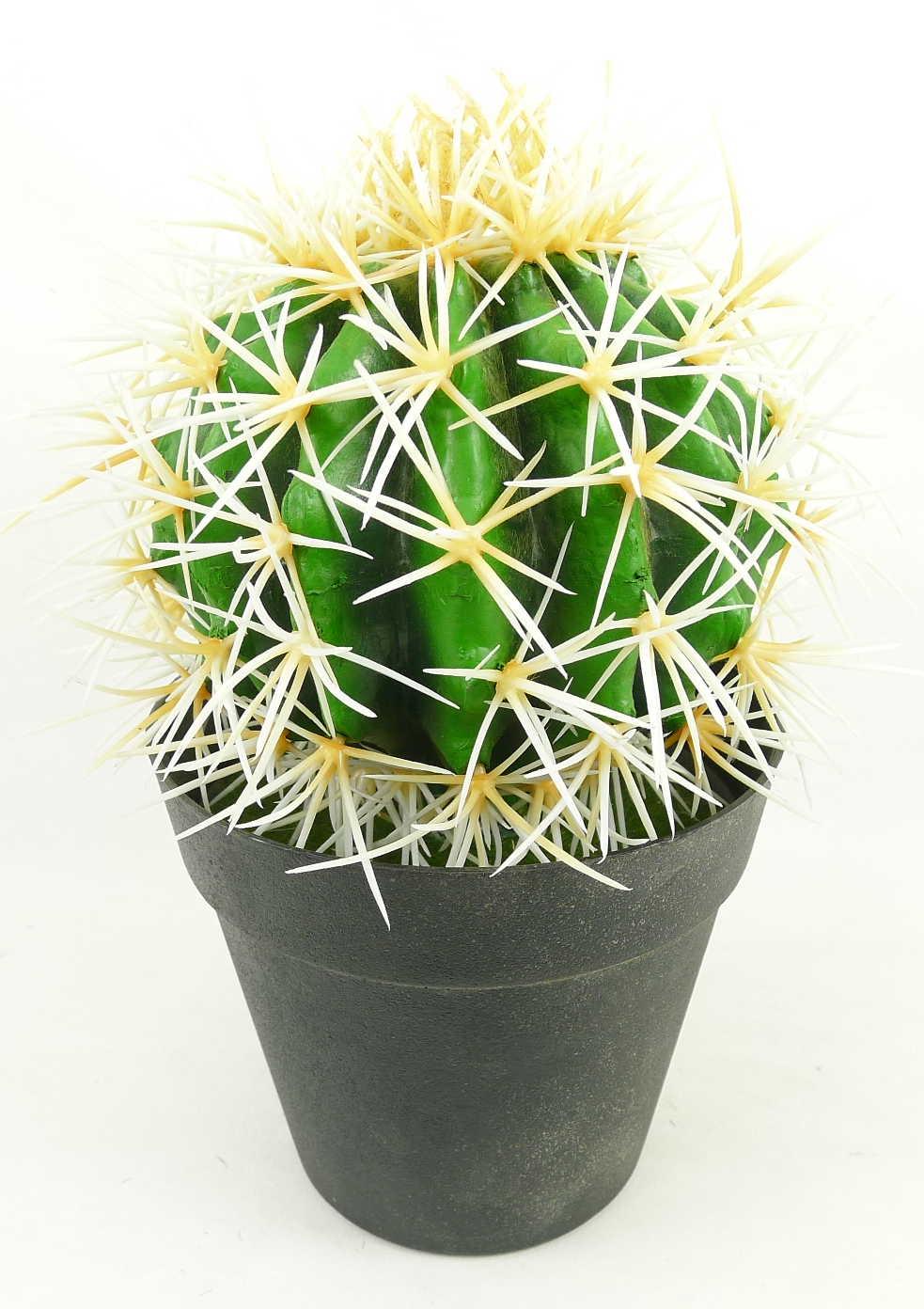 Faux cactus in black pot