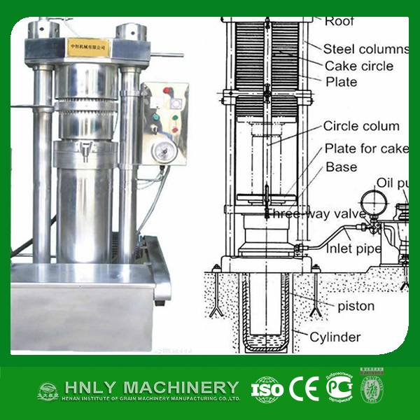 24 hours working peanut walnut sesame hydraulic oil making machine