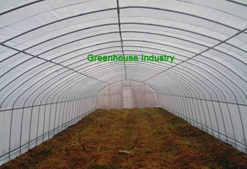 Greenhouse,greenhouse