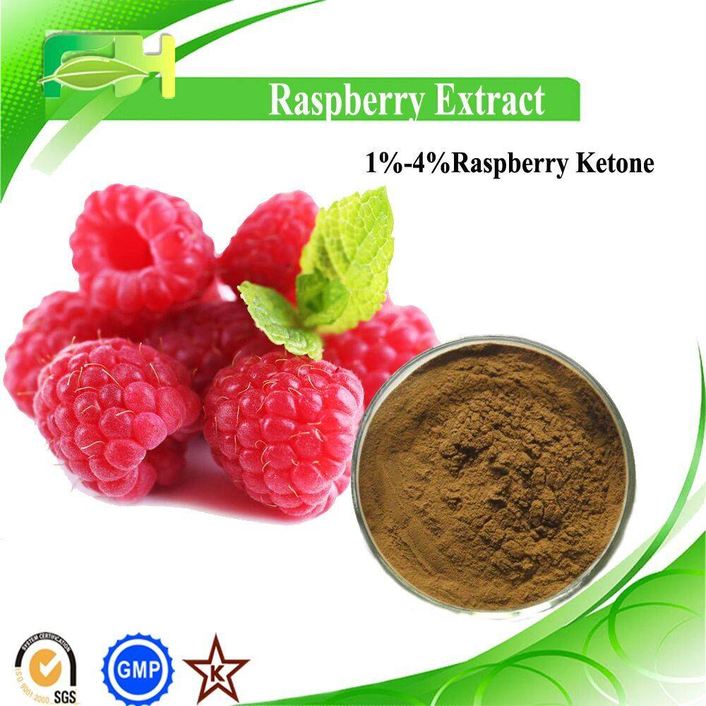 Factory Supply blaeberry Extract
