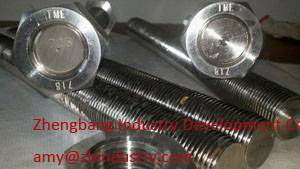 Incoloy718 stud bolt and nut
