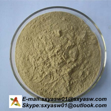 Natural Ginger Extract 5% Gingerols CAS No 23513-14-6