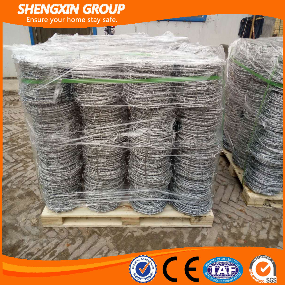 Electric galvanized barb wire security fencing