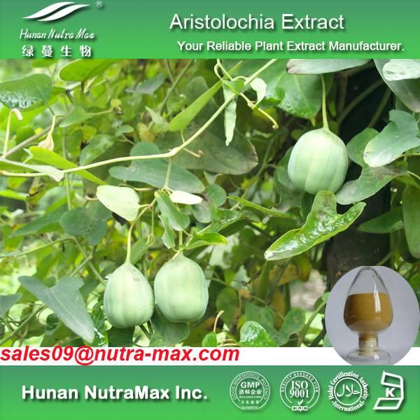 Aristolochia Extract