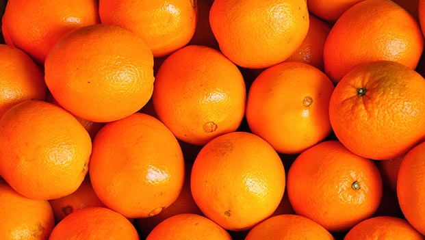 Sweet Fresh mandarin orange/Fresh Orange, Navel Orange, Valencia Oranges