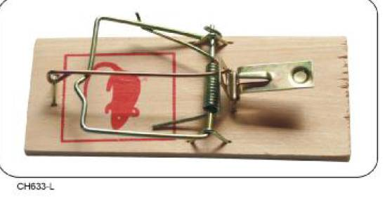 Wooden Mouse Cage Trap Different Size