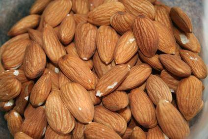 Almond Nuts Best Quality with Available Sample