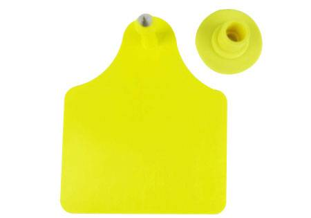 Cattle ear tag  80 x 65mm