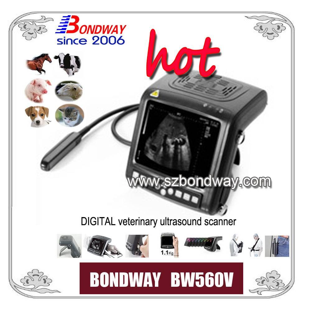 Digital Wrist-top Veterinary Ultrasound Scanner(BW560V)