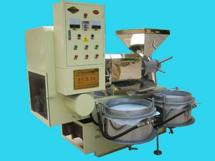 Hot sale oil press machine