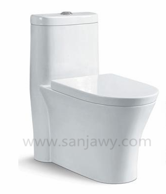 Wash down Watermark dual flush one piece WC toilet