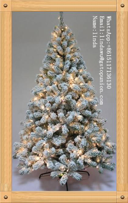 Christmas trees for Green needle Tree With Cones