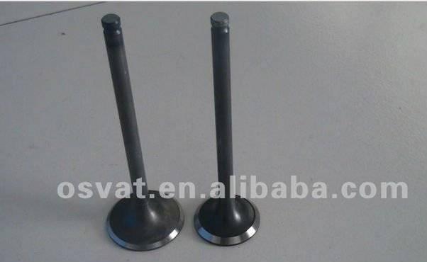 Hyundai H100 engine valve