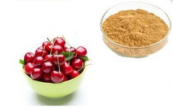 Acerola Cherry Extract Ascordic acid 25% Vitamin C