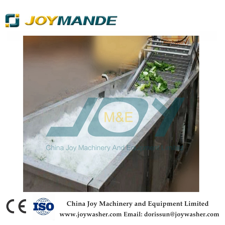 Industrial Fruit Washing Machine Fruit Washer With CE