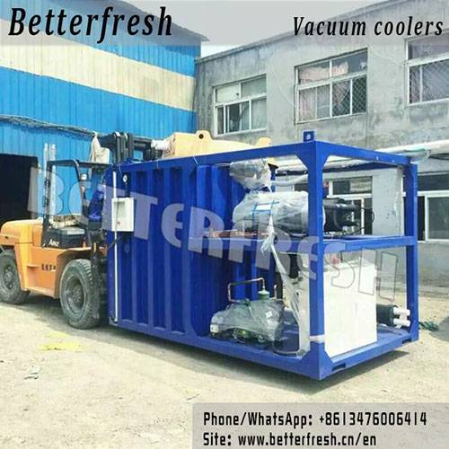 Betterfresh Pallets Vacuum Coolers Vegetables Coolers Cooled Vacuum Cooling Hydro Cooling Systems fo