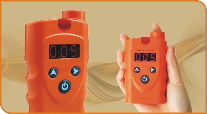 Handheld ECD H2S Detector