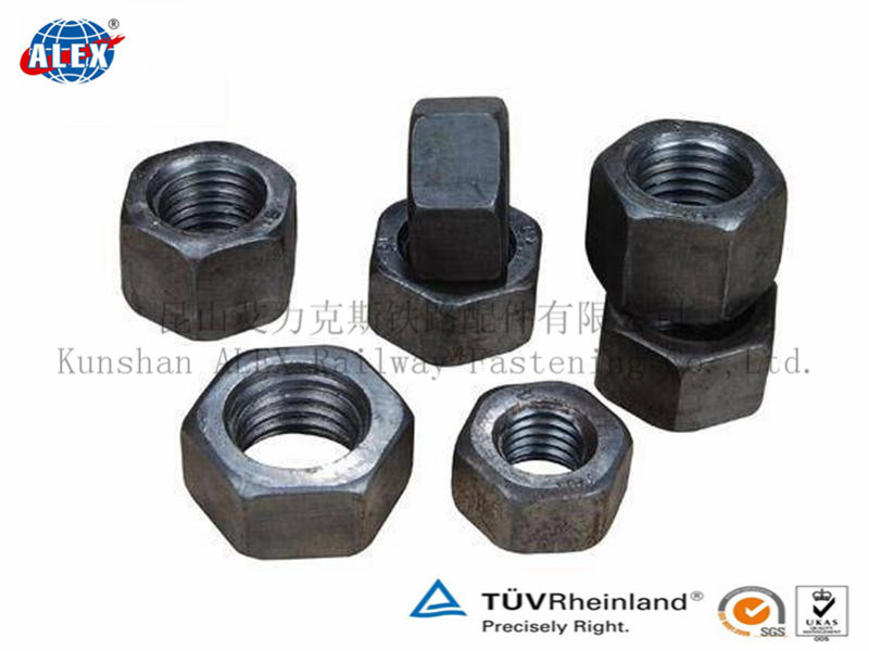 Nut/Hex Nut/Bolt and Nut/ Bolt Nut