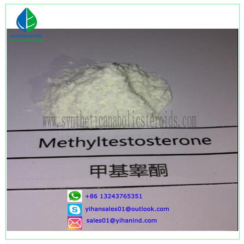 CAS 58-18-4 Androgenic Anabolic Steroid Powder 17-Methyltestosterone for Bodybuilding Judy