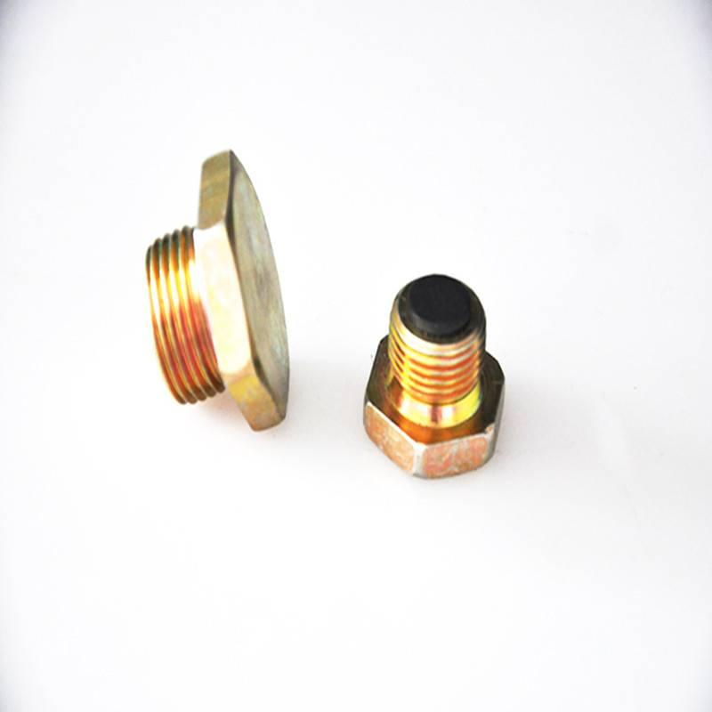 Hexagon head magnetic plug
