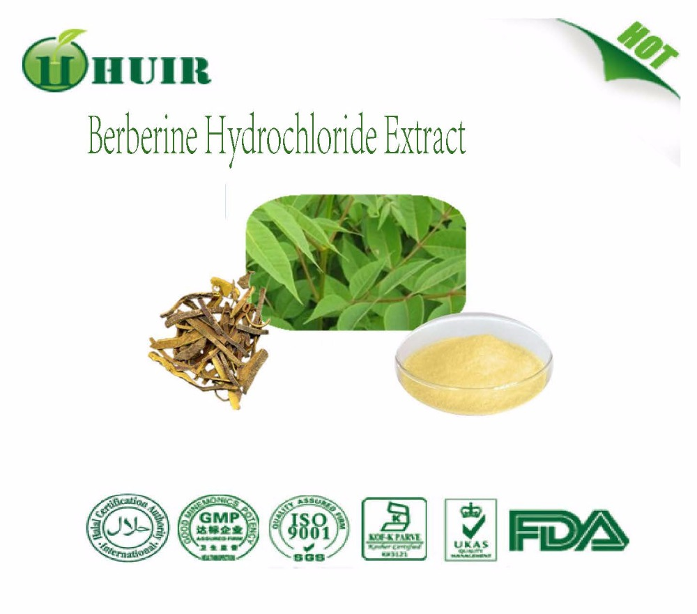 97% Berberine HCL high quality berberine hydrochloride