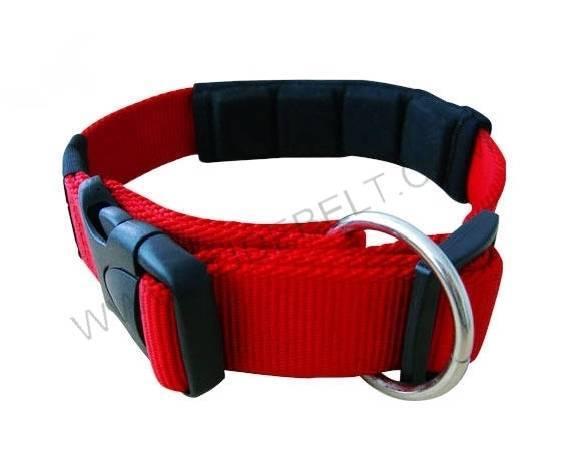 dog supply ,collar