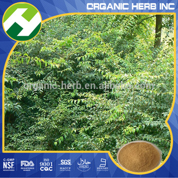 Centella asiatica extract powder 10%-80% asiaticoside UV/HPLC
