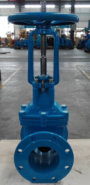 OS&Y Resilient Seated Gate Valve