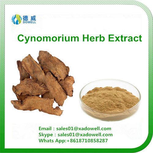 Natural Herbal Cynomorium Herb Extract