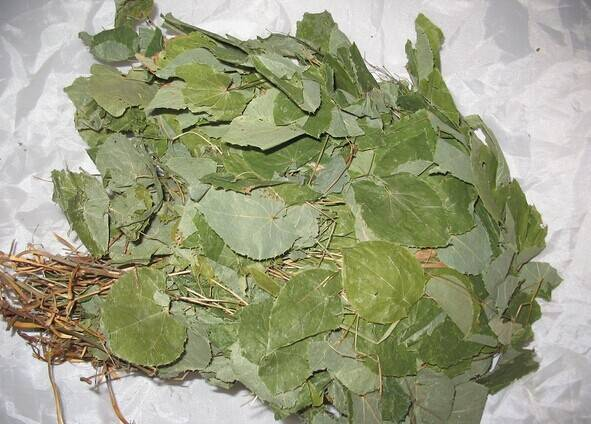 Epimedium Extract 2%,5%,10%,20%,40%,98% Icariin