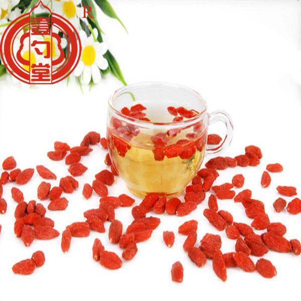 Goji fruit sweet tast ningxia goji berries wolfberry