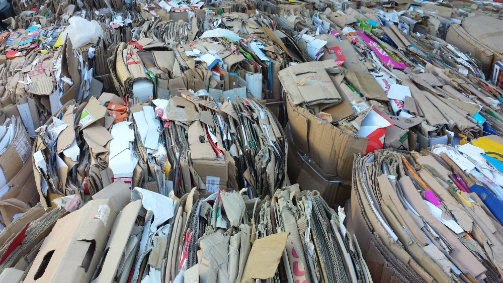 OCC Waste Paper - Paper Scraps 100% Cardboard For Sale.cheap price