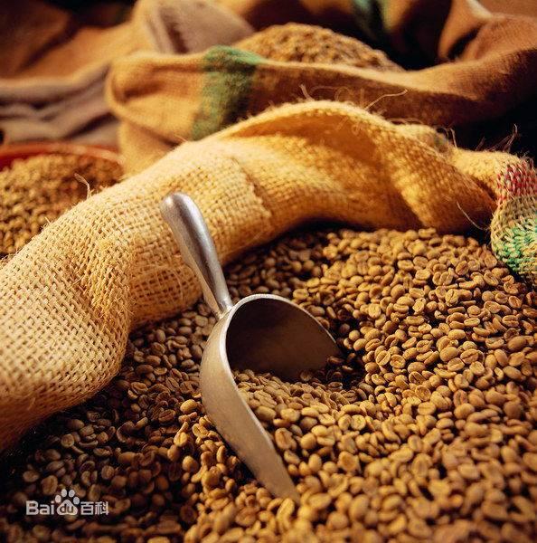 ground coffee beans, vietnamese coffee bean