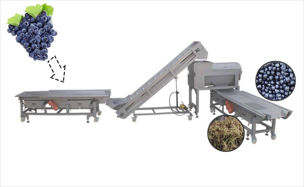 Grape preprocessing line