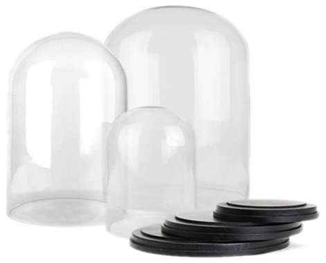 Set of 3-Glass display dome with wood base