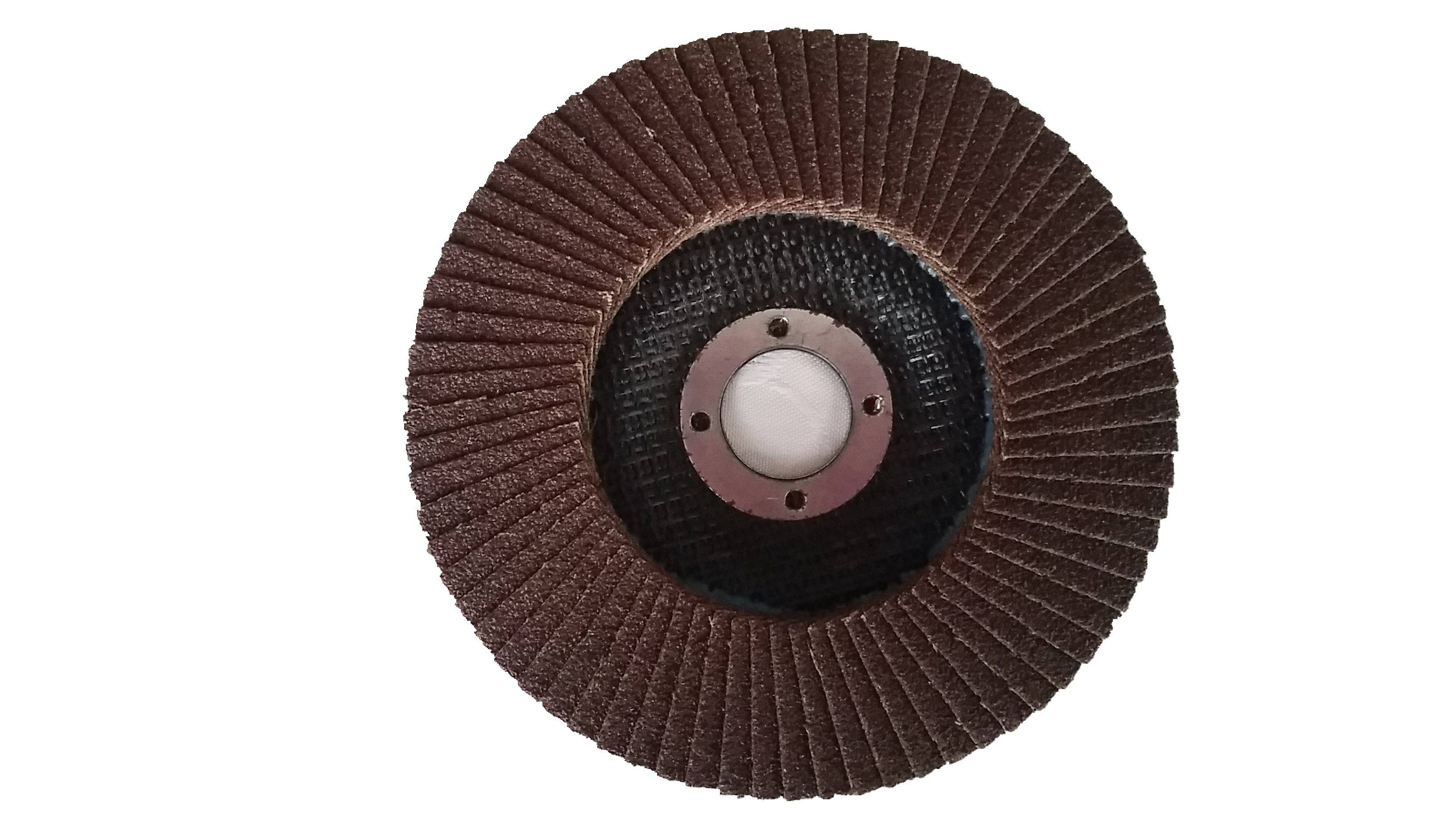 Flexible Grinding Flap Disc In China