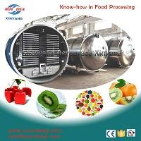fruit vegetable freeze dryer