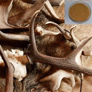 High quality  Anti-aging ,enhance memory products  Velvet antler extract/ Velvet antler extract