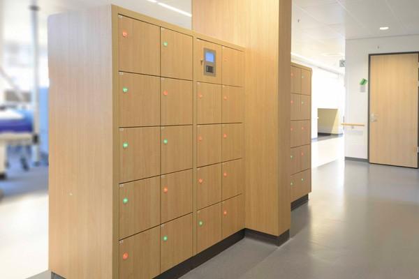 Rich-Lees laminate locker hpl lockers gym locker